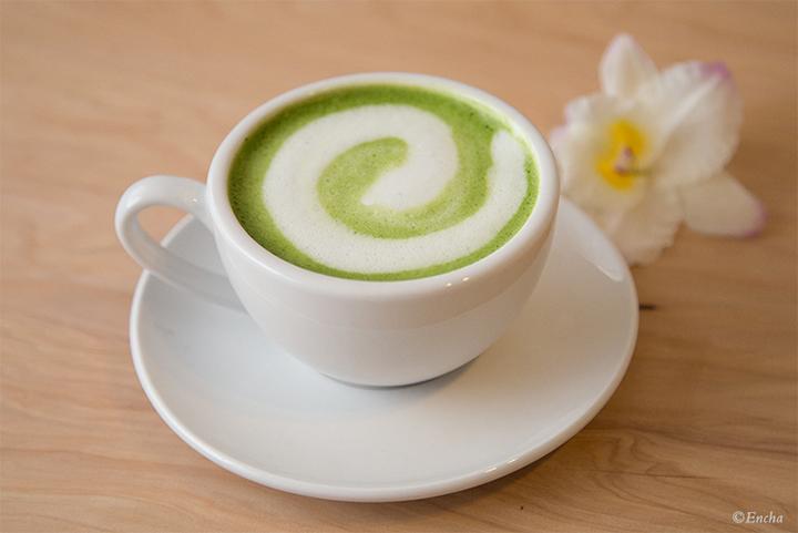 encha latte