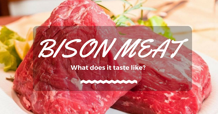 what does bison taste like