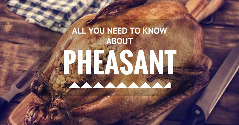 what does pheasant taste like